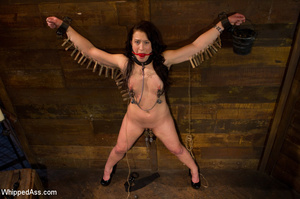 Tying up action with pegging, pussy and  - XXX Dessert - Picture 12