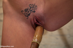 Painful rope restraints along with tits  - XXX Dessert - Picture 15