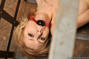 Blonde virgin slut pleads with her eyes as she is gagged, bound, and locked inside a lattice crate - XXXonXXX - Pic 9