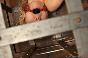 Blonde virgin slut pleads with her eyes as she is gagged, bound, and locked inside a lattice crate - XXXonXXX - Pic 11