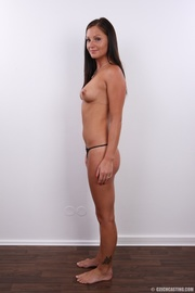 well shaped sexy brunette