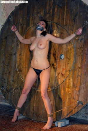 Brunette whore gets tied and used rough - XXX Dessert - Picture 6