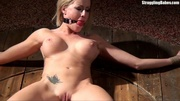 hot curvy slut tied