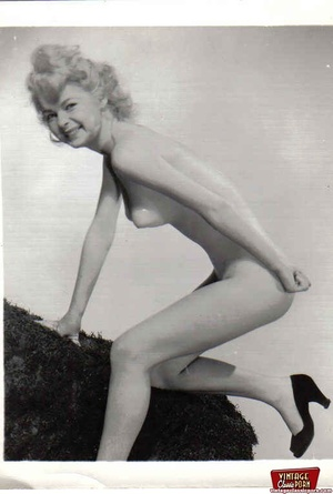 Pretty vintage naked professional models - XXX Dessert - Picture 7