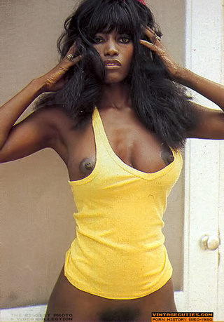 The hairy black pussy 70s from