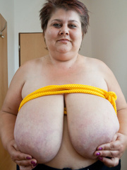 Short-haired mature bitch plying with a yellow rope - Picture 1