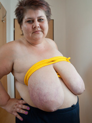 Short-haired mature bitch plying with a yellow rope - Picture 5