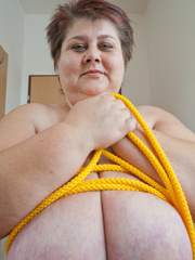 Short-haired mature bitch plying with a yellow rope - Picture 15