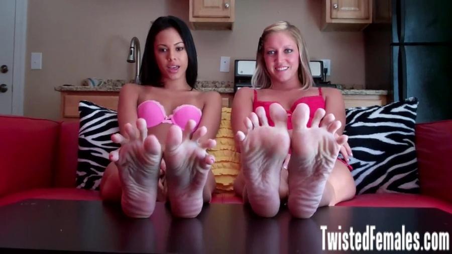 Taylor Raz Pantyhose Feet