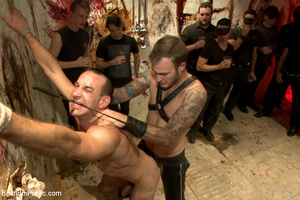 Gay guy sucks cock, gets fucked, whipped - XXX Dessert - Picture 5