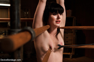 Nude cute girl is hooked to wooden stake - XXX Dessert - Picture 2