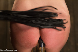 Blonde gets gagged and bound to pole wit - XXX Dessert - Picture 7