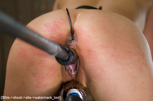 Chick gets bound and head placed in box  - XXX Dessert - Picture 1