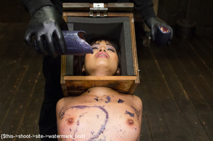 Chick gets bound and head placed in box  - XXX Dessert - Picture 4