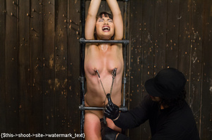 Chick gets bound and head placed in box  - XXX Dessert - Picture 8