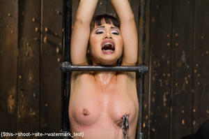 Chick gets bound and head placed in box  - XXX Dessert - Picture 13