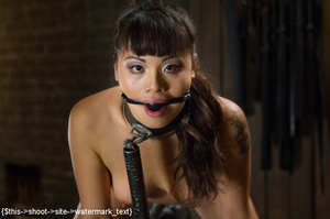 Chick gets bound and head placed in box  - XXX Dessert - Picture 14