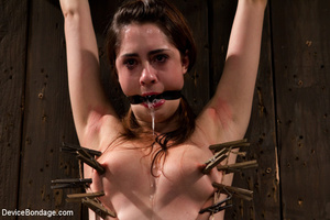 Chick in sweet pain as she is pegged, bo - XXX Dessert - Picture 1