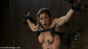 Cute big tits chick is chained and suspe - XXX Dessert - Picture 3