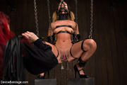 sexy chick gets bound