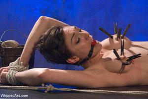 Hot babe with hairy pussy gets tied, whi - XXX Dessert - Picture 8