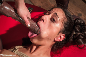 Chick bound with head in box licks cunt  - XXX Dessert - Picture 7