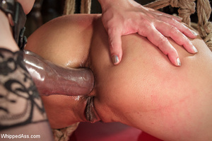 Chick bound with head in box licks cunt  - XXX Dessert - Picture 11