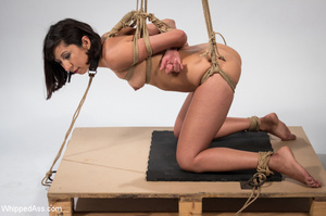 Chick tied with ropes, clips on pussy, c - XXX Dessert - Picture 15