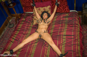 Chick watching porn and masturbating, ge - XXX Dessert - Picture 15
