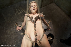 Roped blonde gets pegged, sucks cock and - XXX Dessert - Picture 1