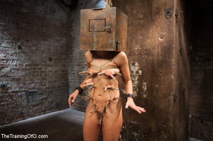Sexy chick gets head boxed, pegged and r - XXX Dessert - Picture 2