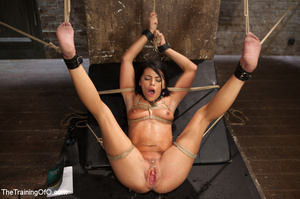 Sexy chick gets head boxed, pegged and r - XXX Dessert - Picture 6