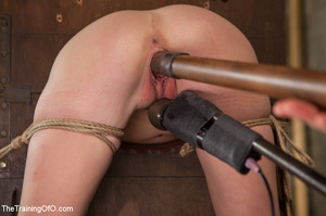 Stud master ropes and suspends blonde, p - XXX Dessert - Picture 6
