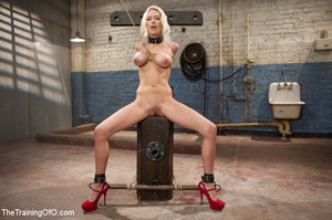 Sweet tits blonde chick gets tied, domin - XXX Dessert - Picture 2