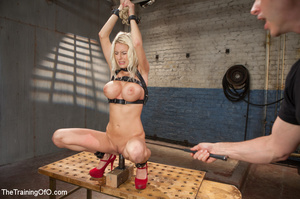 Sweet tits blonde chick gets tied, domin - XXX Dessert - Picture 9