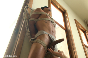 Roped guy sucks dick and gets blowjob be - XXX Dessert - Picture 1