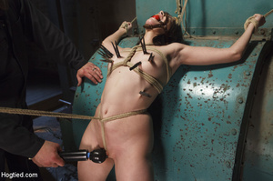Sweet lass gets roped, pegged on tits an - XXX Dessert - Picture 6