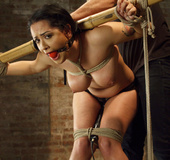 Curvy babe gets gagged, roped with tits tied and fucked with vibrator