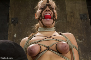 Nude girl bound with head covered and ti - XXX Dessert - Picture 6