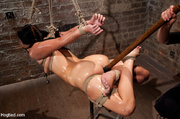 damsel roped and bound