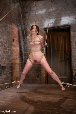 Sweet nude babe roped and hung with head - XXX Dessert - Picture 4