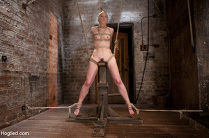 Sweet nude babe roped and hung with head - XXX Dessert - Picture 11