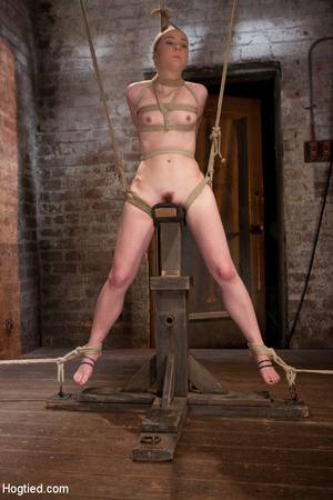 Sweet nude babe roped and hung with head - XXX Dessert - Picture 12
