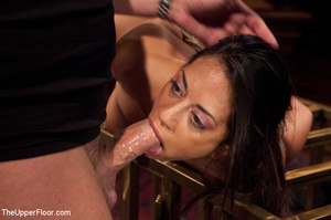Girl brought out from cage to be tied, s - XXX Dessert - Picture 5