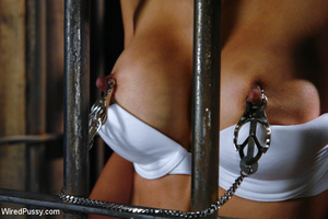 Asian babe caged and zapped, made to lic - XXX Dessert - Picture 2