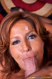 hot cougar goes down