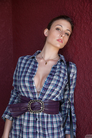 Cute brunette posing in a checked dress  - XXX Dessert - Picture 4