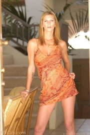 brooke banner dress and