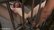 fair-haired cougar gets tied