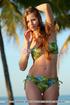coquette colorful bikini models